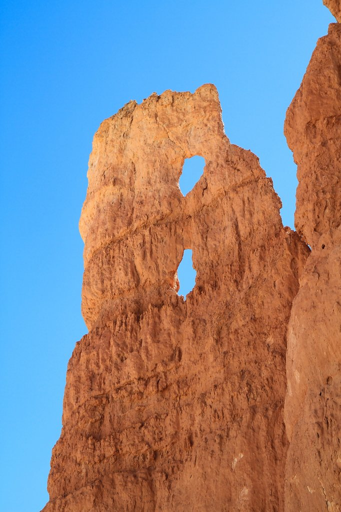 Hoodoo at Bryce Canyon